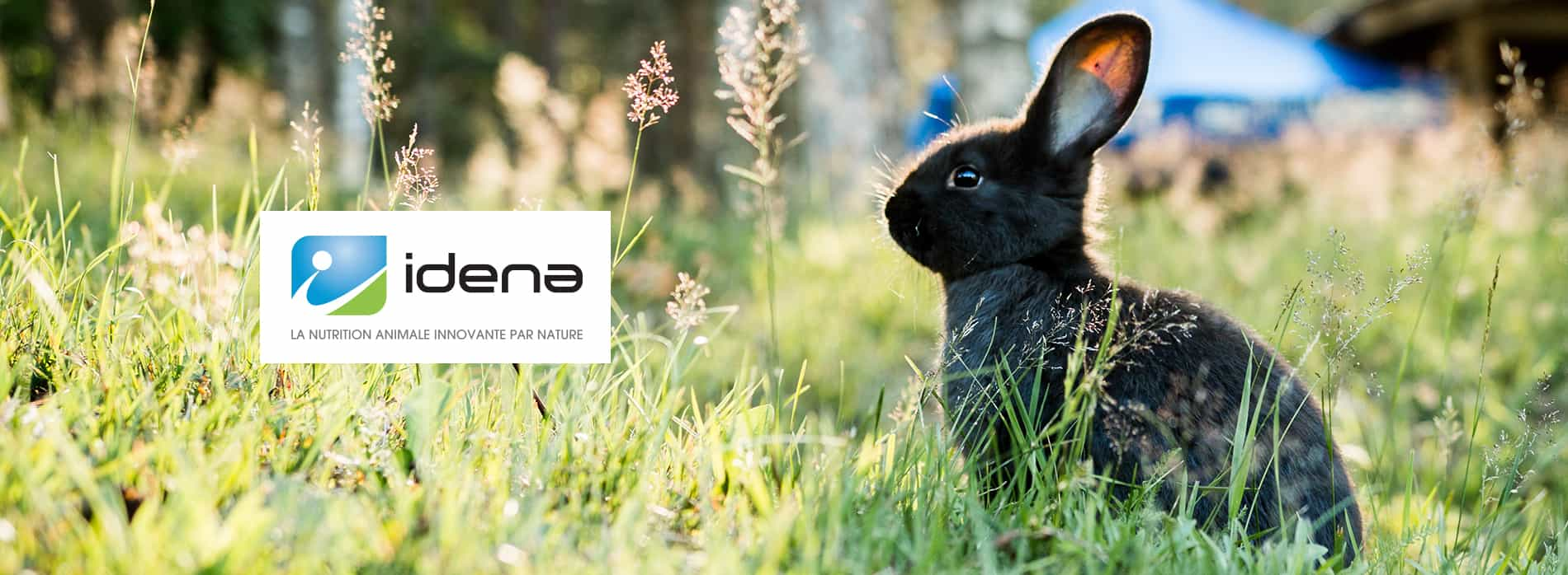 Idena Nutrition animale